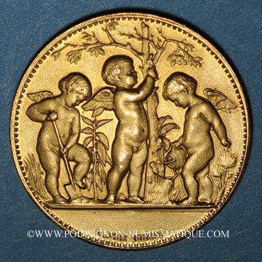 Coins Bas-Rhin. Société d'horticulture du Bas-Rhin. Médaille bronze doré. 28,21 mm