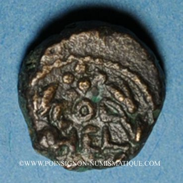 Coins Coelé-Syrie. Héliopolis (2e - 3e siècle). Petit bronze