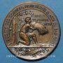 Coins Alsace. Bas-Rhin. Société des Sciences, Agriculture et Arts du Bas-Rhin. 1899. Médaille bronze 50 mm