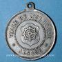 Coins Alsace. Mulhouse. Cavalcade de bienfaisance. 18 avril 1881. Médaille en étain. 32 mm