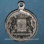 Coins Alsace. Mulhouse. Cavalcade de bienfaisance. 1884. Médaille en laiton. 28 mm