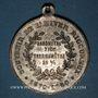Coins Alsace. Mulhouse. Cavalcade de bienfaisance. Hiver rigoureux. 1879-80. Médaille zinc. 32,12 mm