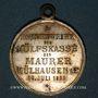 Coins Alsace. Mulhouse. Consécration du drapeau de la Caisse de Secours des Maçons. 1893. Laiton argenté