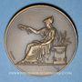 Coins Alsace. Mulhouse. Exposition apicole et horticole. 1911. Médaille bonze. 50,56 mm
