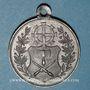 Coins Alsace. Mulhouse. Inauguration des nouveaux abattoirs. 1888. Médaille étain. 28,77 mm