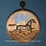 Coins Alsace. Riedisheim. Fête de la Musique. 1891. Médaille bronze. 26,06 mm