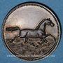 Coins Alsace. Riedisheim. Fête de la Musique. 1891. Médaille bronze. 28 mm