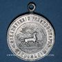 Coins Alsace. Riedisheim. Société de Chant Freundschaft. Bénédiction du drapeau. 1906. Médaille alu.