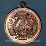 Coins Alsace. Saint-Louis. 1er concours de chant du Haut-Rhin. 1892. Médaille cuivre. 27,3 mm