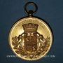 Coins Alsace. Schiltigheim. Fête de la musique. (28 juin 1891). Médaille bronze doré