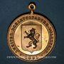 Coins Alsace. Sélestat. 2e fête populaire. 1895. Médaille bronze doré, avec son œillet. 33,30 mm