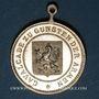 Coins Alsace. Sélestat. Cavalcade. 1891. Médaille bronze. 26 mm, avec son œillet