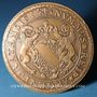 Coins Alsace. Strasbourg. 23e congrès Eurofinas. 1983. Médaille bronze. 59,2 mm