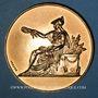 Coins Alsace. Strasbourg. Congrès National des Droguistes. 1949. Médaille bronze. 50,5 mm
