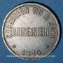 Coins Alsace. Strasbourg. Excursion de La Chorale à Ochsenstein. 1879. Médaille étain. 25 mm