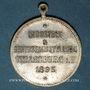Coins Alsace. Strasbourg. Exposition Industrielle. 1895. Médaille laiton argenté. 28 mm. Avec son oeillet
