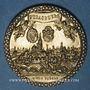 Coins Alsace. Strasbourg. Exposition philatélique Internationale. 1927. Médaille bronze. 35 mm