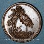 Coins Alsace. Strasbourg. Naissance de Louis Maurice François Himly. 1894. Médaille bronze. 22 mm