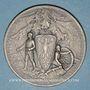 Coins Alsace. Surveillance du territoire allemand à la frontière des Vosges. 1914-1917. Médaille en argent