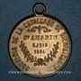 Coins Saint-Amarin. Cavalcade de bienfaisance. 1884. Médaille laiton. 28,3 mm, avec anneau