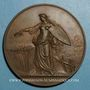 Coins Strasbourg. Exposition agricole. 1890.  Bronze. 65 mm.