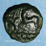 Coins Aulerques Eburovices. Région d'Evreux. Bronze  aux animaux affrontés, 2e moitié du 1er s. av. J.-C