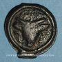 Coins Rémi. Région de Reims. Potin au bucrâne, 1er siècle av. J-C