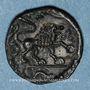 Coins Véliocasses. Région de Rouen - Suticcos. Bronze au lion, vers 60-30/25 av. J-C