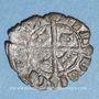 Coins Italie. Sicile. La couronne d'Aragon. Maria et Martin (1396-1402). Denier
