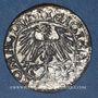 Coins Lituanie. Grand Duché. Sigismond III Auguste (1544-1572). 1/2 gros 1550. Cuivre arg. Faux d'époque !