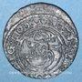 Coins Lituanie. Grand Duché. Sigismond IV Vasa (1587-1632). 2 deniers 1625