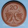 Coins Pologne. Ziebice. Münsterberg Schles. 20 pfennig. Porcelaine
