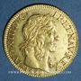 Coins Louis XIII (1610-1643). Louis d'or 1642 A. Type avec mèche mi-longue et baies