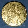 Coins Louis XIV (1643-1715). Louis d'or à l'écu 1690 A. Réformation