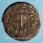 Coins Allemagne. Juliers. Guillaume I (1361-1393). Gros tournois