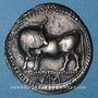 Coins Italie. Lucanie. Sybaris. Statère, 560-510 av. J-C