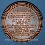 Coins Lorraine. Adalbert. Médaille en bronze