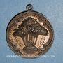 Coins Algérie. Staoueli. La Trappe d'Afrique (vers 1850). Médaille bronze
