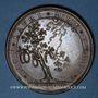 Coins Henri de la Tour d'Auvergne, dit Turenne (1611-1675). 1683. Médaille bronze. 53,2 mm