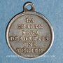 Coins Louis Philippe 1er. Médaille de la Charte de 1830.  Médaille argent