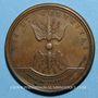 Coins Louis XIV. Combat de Sinsheim. Médaille bronze 1674