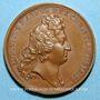Coins Louis XIV. Combat près du pont d'Altenheim. Médaille bronze 1675