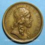Coins Louis XIV. Naissance du Dauphin. Médaille bronze 1638