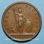 Coins Louis XIV. Prise de Fribourg. Médaille bronze 1677