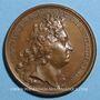 Coins Louis XIV. Prise de Landau et Fribourg. Médaille bronze 1713