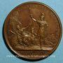 Coins Louis XIV. Prise de Verrua. Médaille bronze 1705
