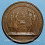 Coins Louis XIV. Renouvellement de l'Alliance avec les Suisses. Médaille bronze 1663
