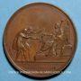Coins Louis XVIII. Charte Constitutionnelle. Médaille bronze, 1814
