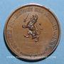 Coins Lyon. Société protectrice des animaux (fondée en 1854). Médaille cuivre