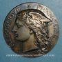 Coins Ministère de l'Agriculture et du Commerce. Serviteurs ruraux. 1880. Médaille argent. 50,6 mm